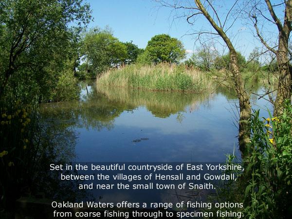 oakland waters